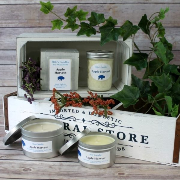 Apple Harvest Soy Candle
